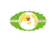 上海世展环保新材料科技有限公司